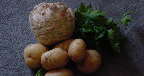 Sahniges Sellerie-Kartoffel-Pürée