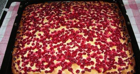 Quark - Rhabarberkuchen auf Hefeteig