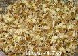 Rezept Sprossen und Keimlinge in der Vollwerternährung - Info