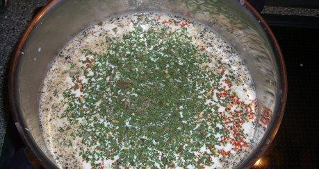 Panir (Paneer) - indischer Käse selbstgemacht (ähnlich Mozzarella)