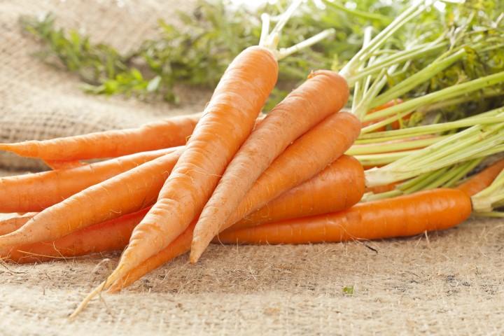 Karotten Ziehen