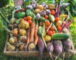 5 Tricks für Obst und Gemüse