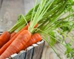 Klassiker Karottenkuchen: Wie die Rüeblitorte am besten gelingt