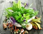 Kräuter selber ziehen: So funktioniert's auch ohne eigenen Garten